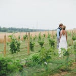 vineyard-wedding-pic_1